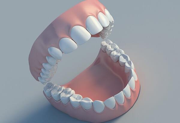 hàm răng có mấy cái